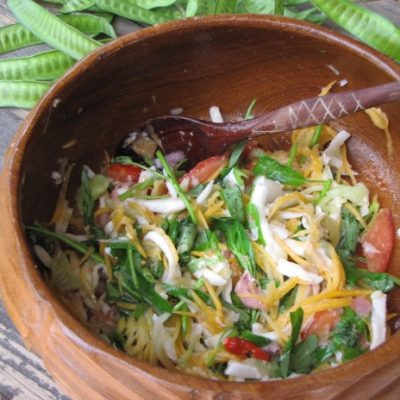 Ayahuasca-Diet-Food-Retreat
